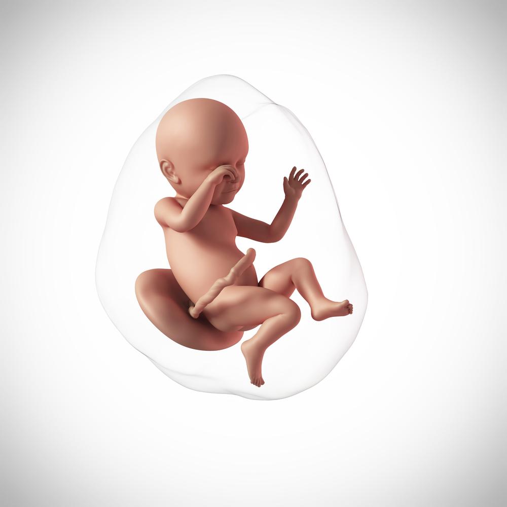 Těhotenství 39. týden