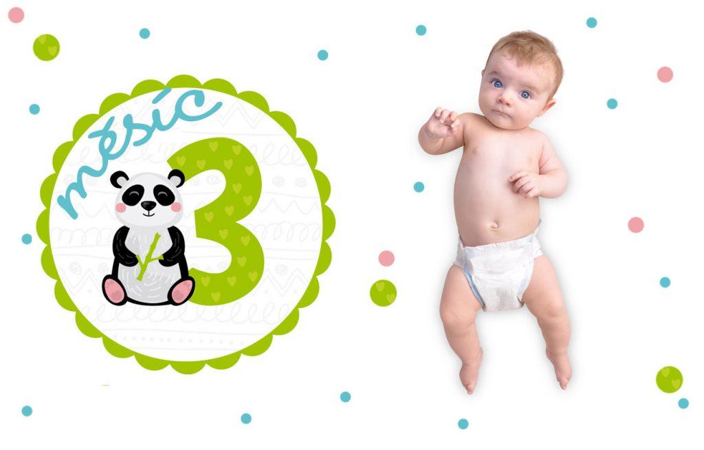 Vývoj miminka 3. měsíc