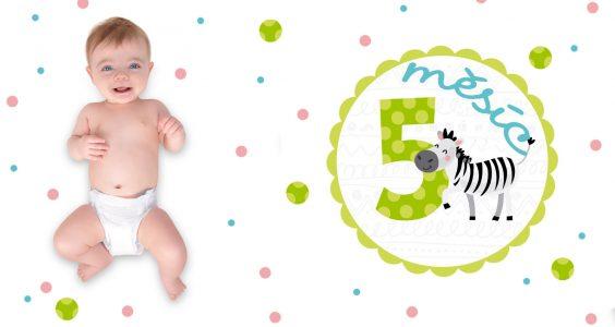 Vývoj miminka 5. měsíc