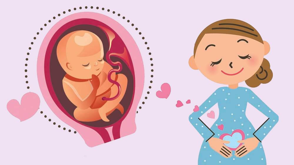 Průběh těhotenství