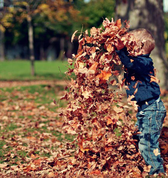 Podzim není nuda - ale jak zabavit děti? 1