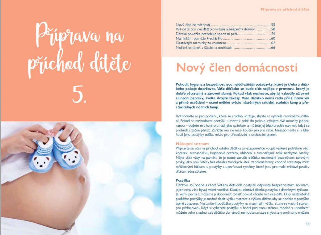 Publikace Happy Baby - Můj průvodce těhotenstvím 1