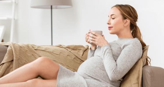 těhotná pije čaj